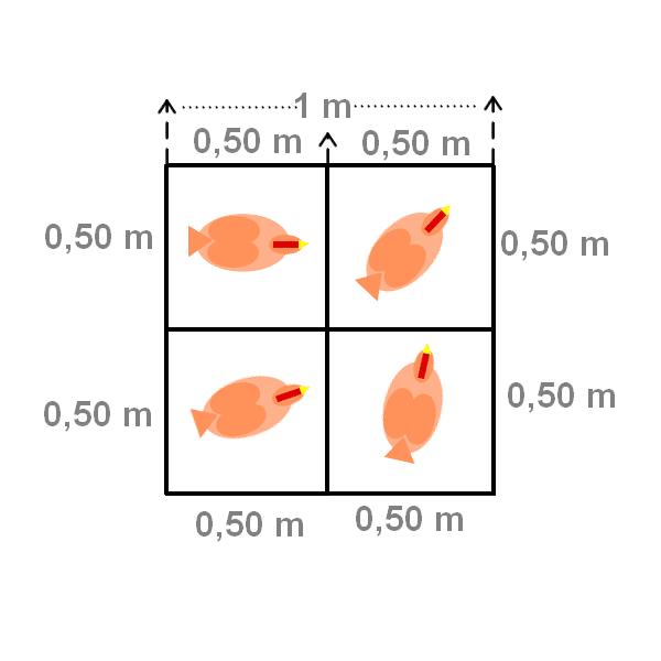 https://poulailler-bio.fr/wp-content/uploads/2021/08/densite-poules.png